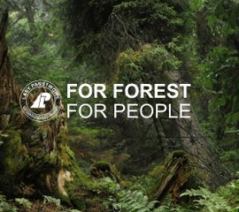 For Forest for People (leśnictwo)