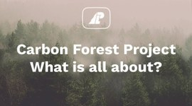 The Forest Carbon Project. What is all about?
