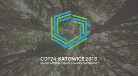 COP24. How do we balance the carbon footprint?