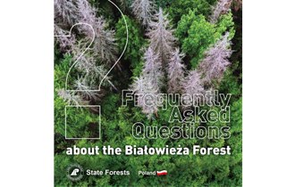 Frequently Asked Questions about the Białowieża Forest
