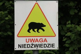 Warning! Bears!