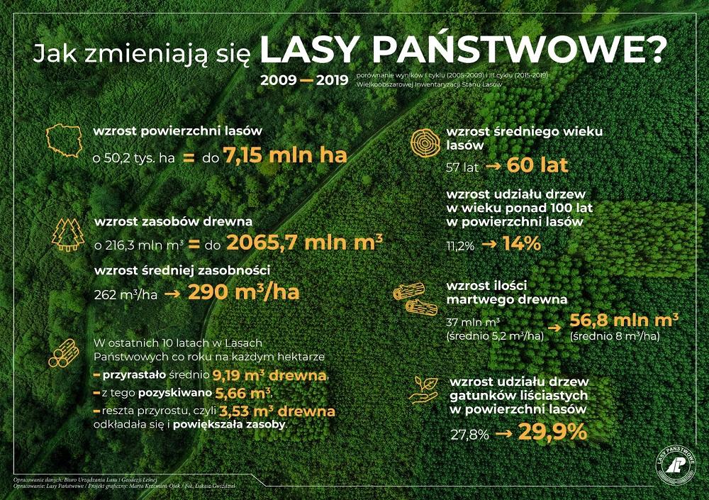 Infografika - Jak zmnieniają sie Lasy Państwowe?