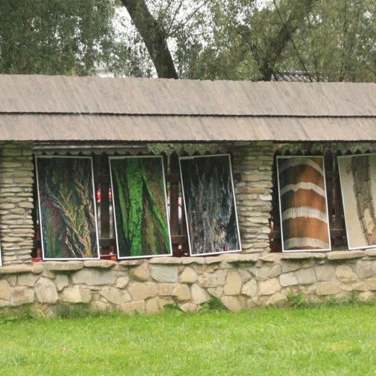 """Wystawa """"Drzewa pod lupą"""" autorstwa Elżbiety Dzikowskiej prezentowała korę drzew z różnych kontynentów"""