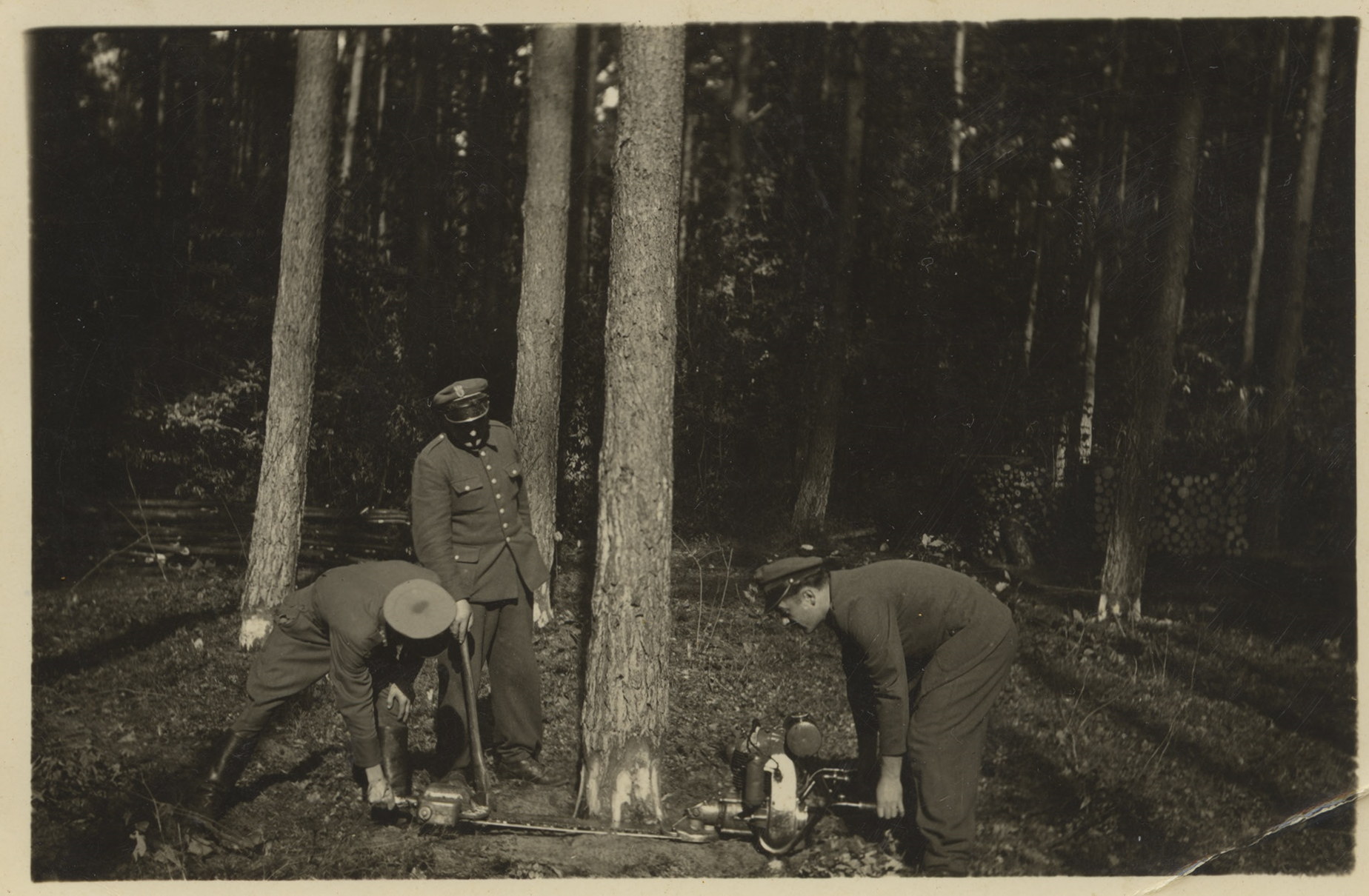 koniec lat 50. Franciszek Solarz (z prawej) ćwiczą pilarką 2-osobową Pilana.jpg