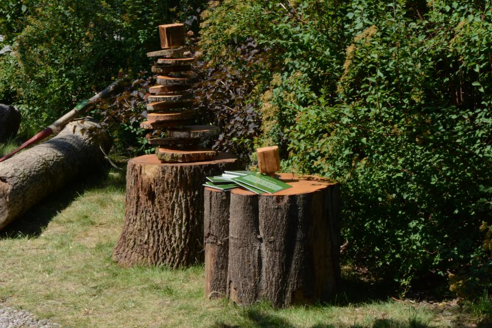 las wystawa01.jpeg