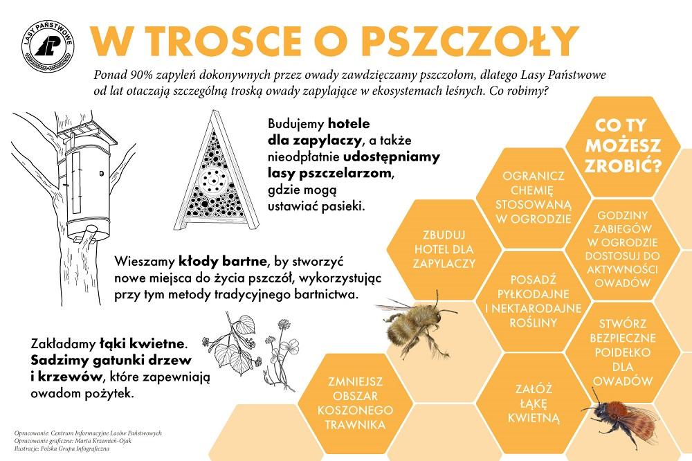 w_trosce_o_pszczoly_01.jpg