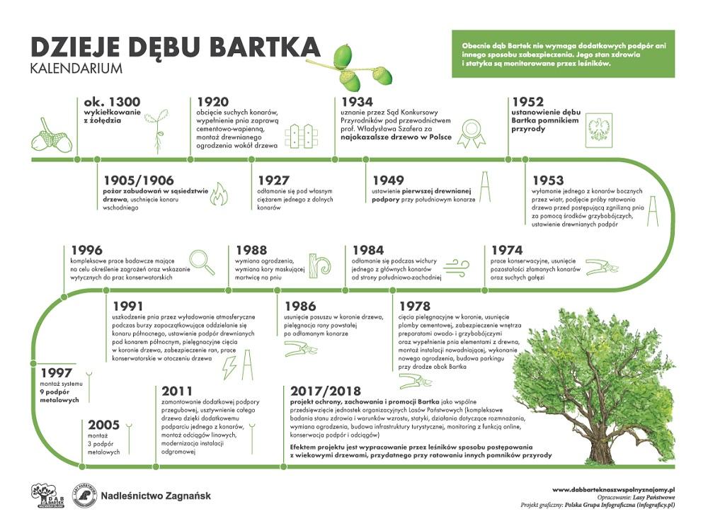 Dab_Bartek_online_kalendarium.jpg