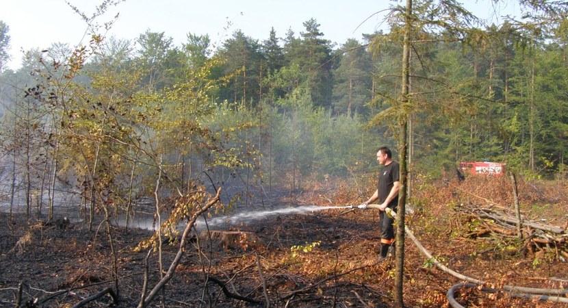 Rośnie zagrożenie pożarowe w lasach