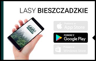 lasy_bieszczadzkie.jpg
