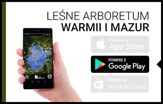 lesne_arboretum.jpg