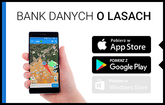 bank_danych_o_lasach.jpg