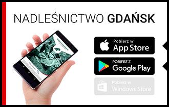 nadlesnictwo_gdansk.jpg