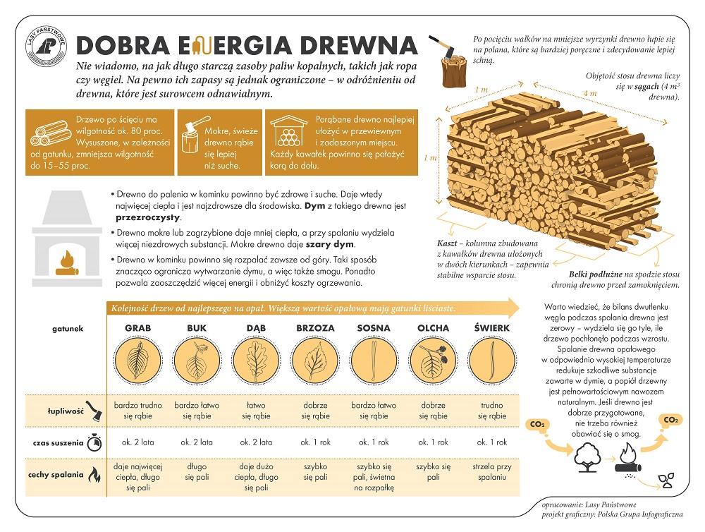 drewno_energia 1000.jpg