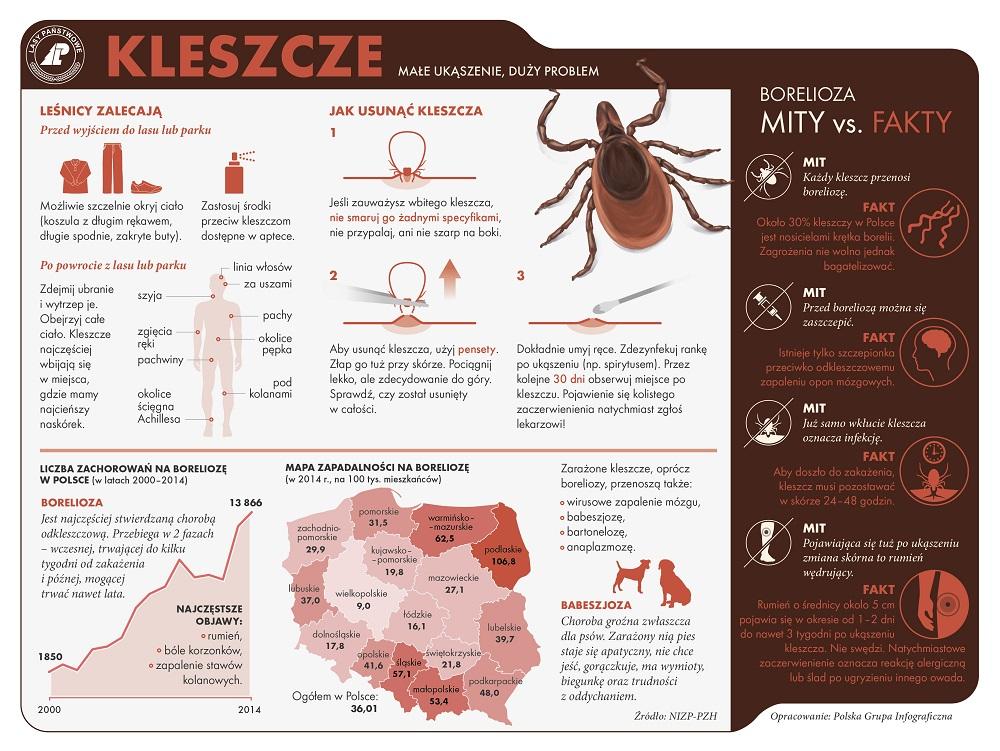 GOTOWA KLESZCZ_cz-2 1000.jpg