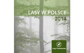 Lasy w Polsce 2014