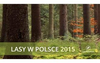 Lasy w Polsce 2015