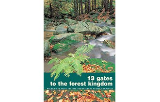 13 gates to the forest kingdom
