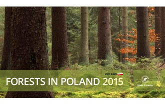 Forests in Poland 2015