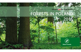 Forests in Poland 2016