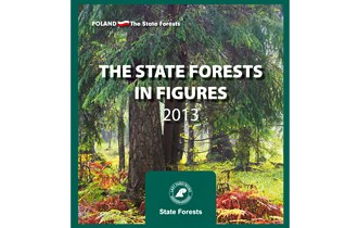 The state forests in figures 2013