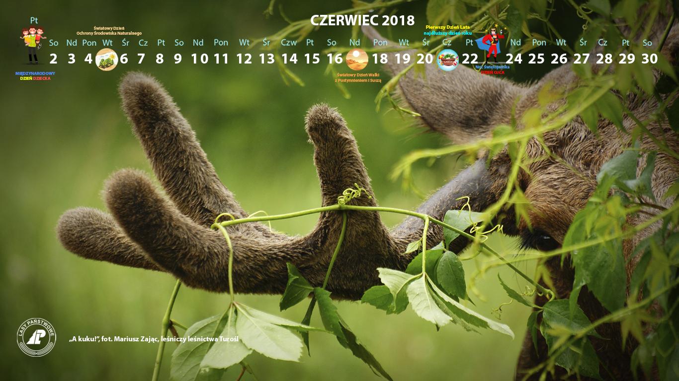 Kalendarz_czerwiec_2018_1366x768[1].jpg