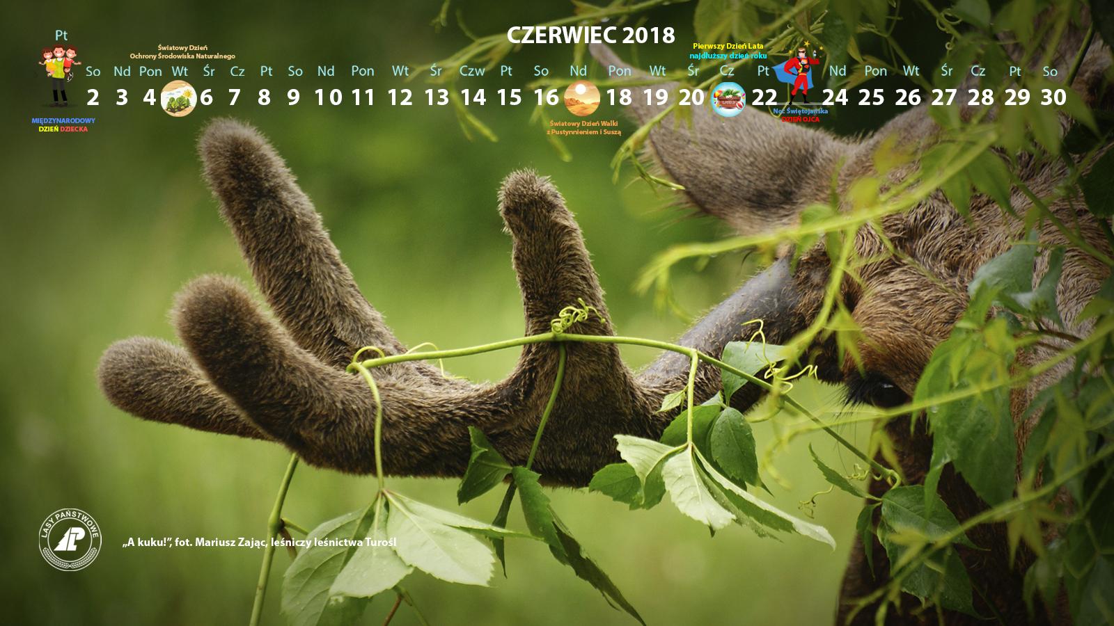 Kalendarz_czerwiec_2018_1600x900[1].jpg