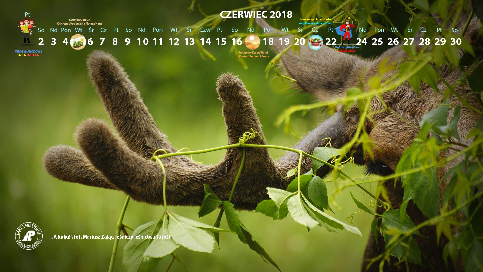 Kalendarz_czerwiec_2018_1920x1080[1].jpg