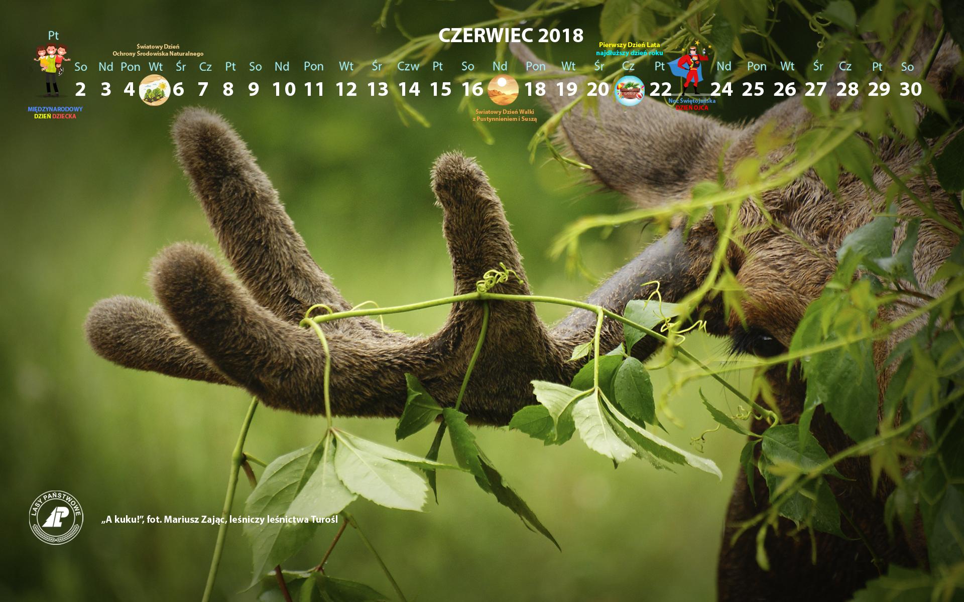 Kalendarz_czerwiec_2018_1920x1200[1].jpg