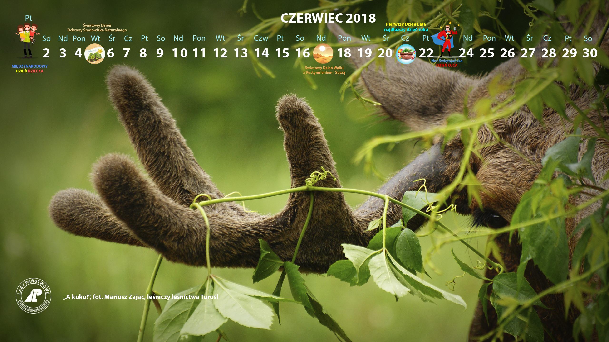 Kalendarz_czerwiec_2018_2560x1440[1].jpg