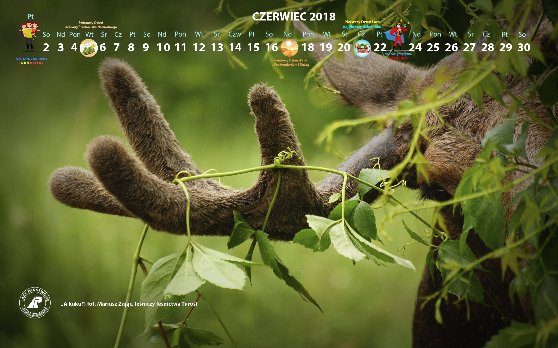 Kalendarz_czerwiec_2018_2880x1800[1].jpg