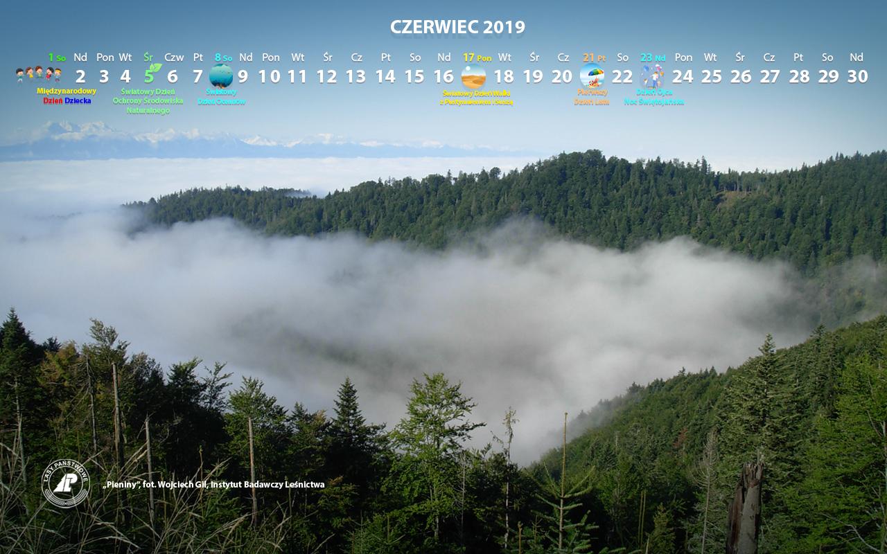 Kalendarz_06-2019_1280x800[1].jpg