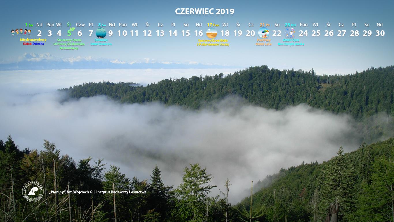Kalendarz_06-2019_1366x768[1].jpg