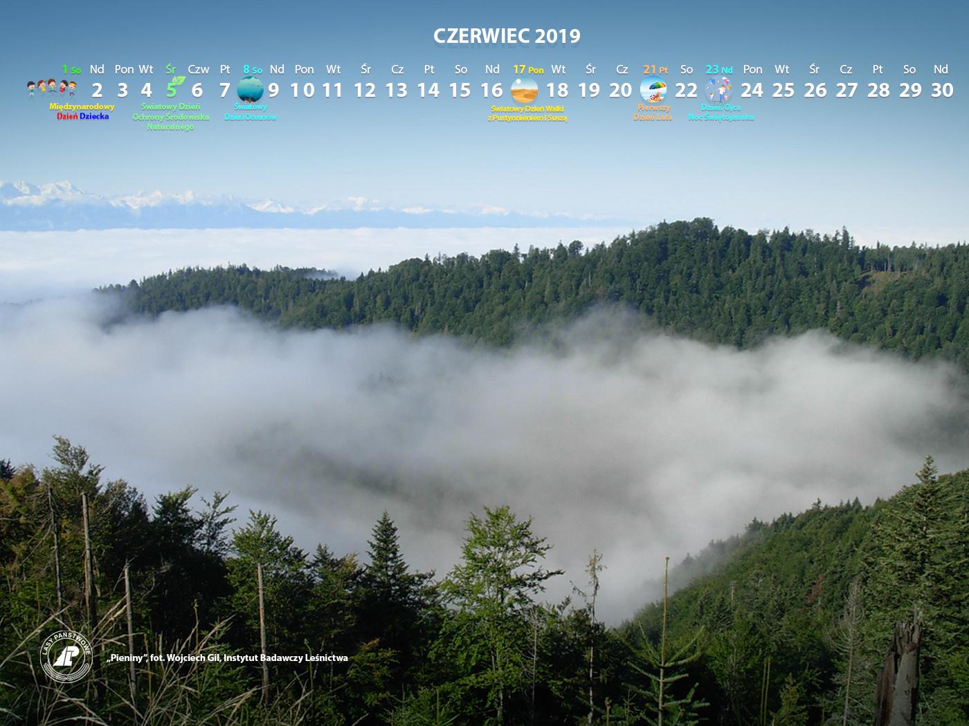 Kalendarz_06-2019_1400x1050[1].jpg