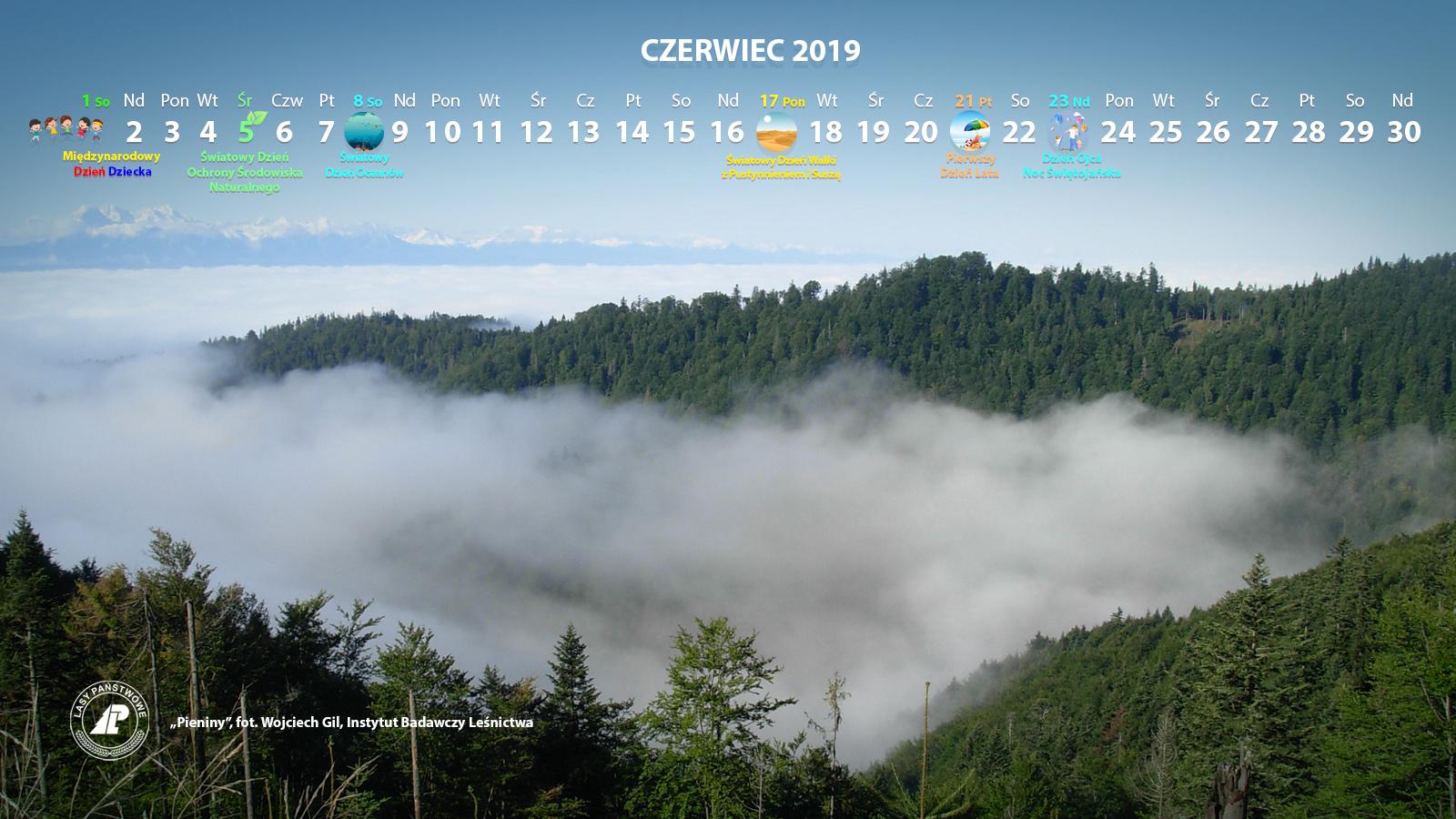 Kalendarz_06-2019_1600x900[1].jpg