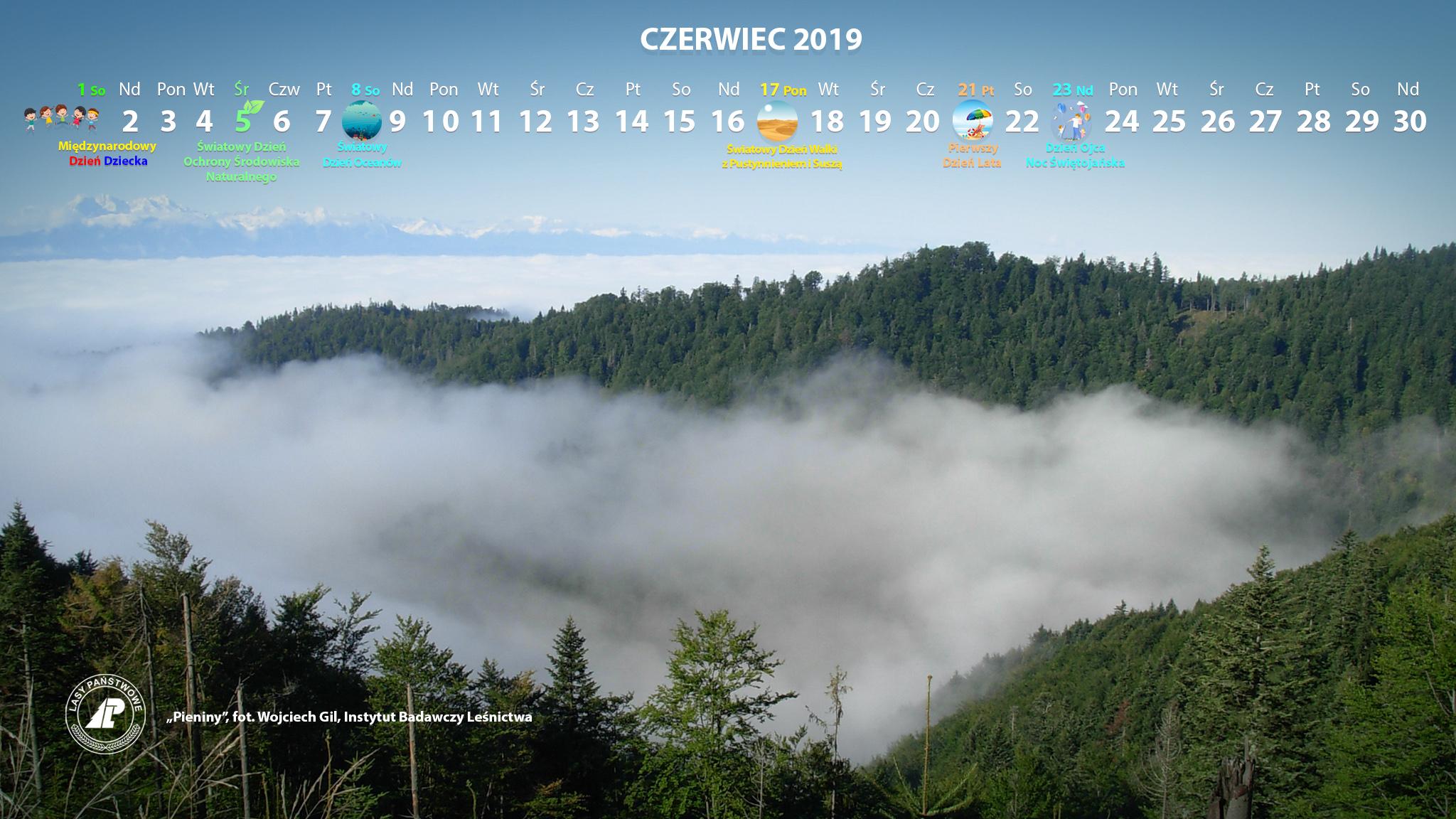 Kalendarz_06-2019_2048x1152[1].jpg