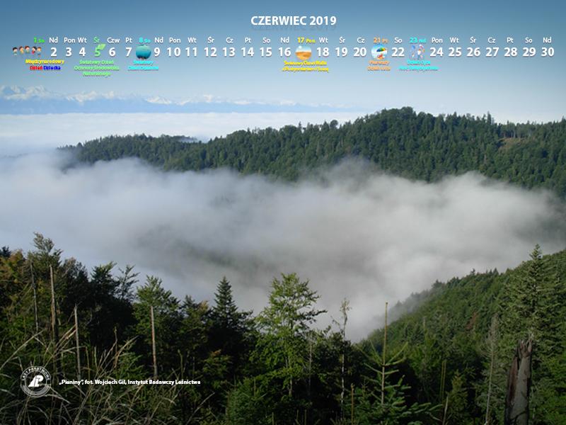Kalendarz_06-2019_800x600[1].jpg