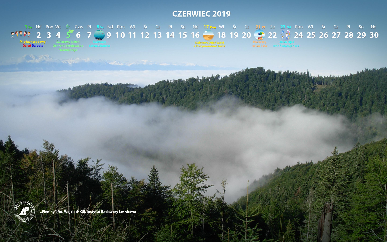 Kalendarz_CZERWIEC_2019_2880x1800[1].jpg