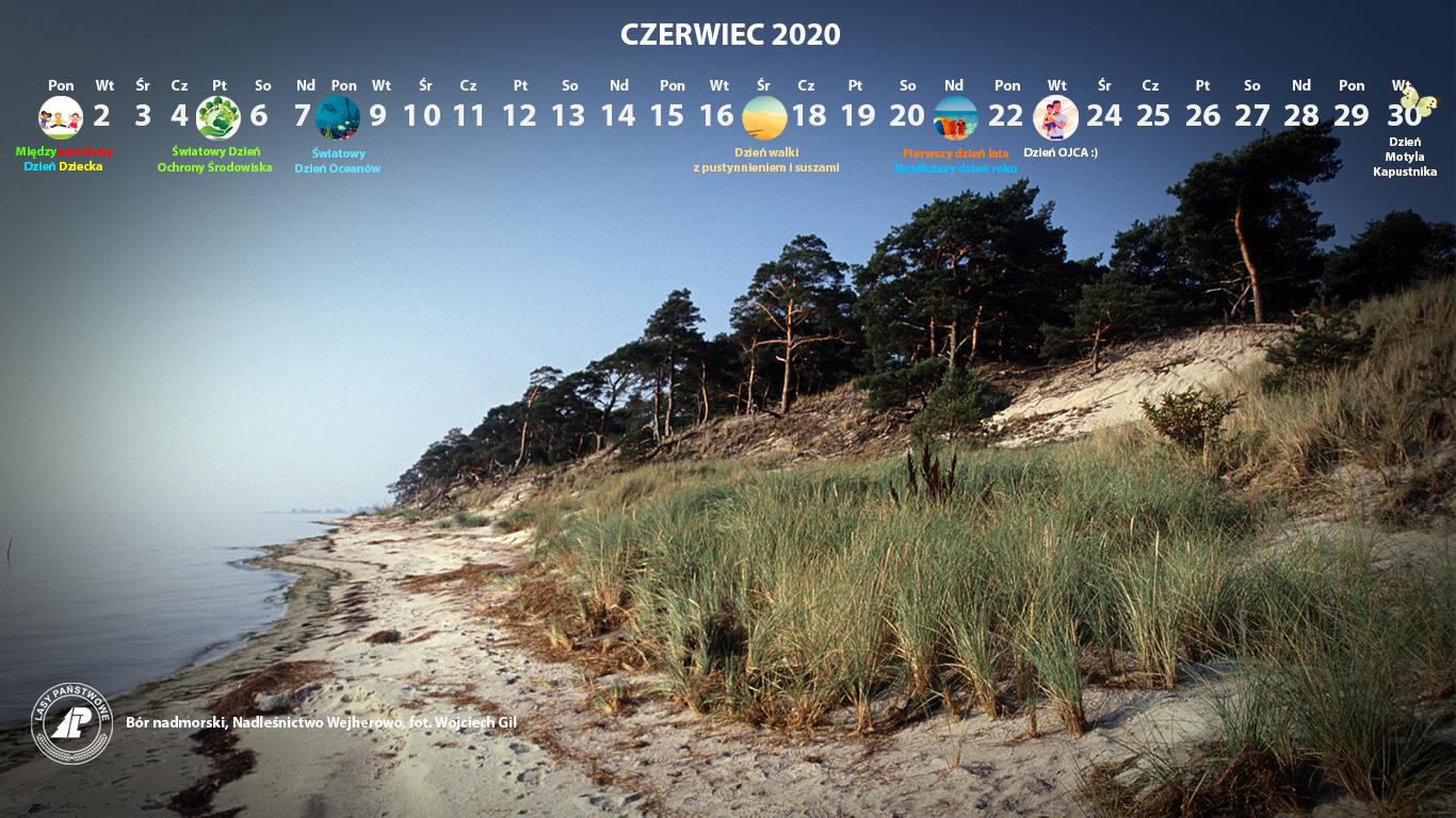 Kalendarz czerwiec 2020 1366x768.jpg