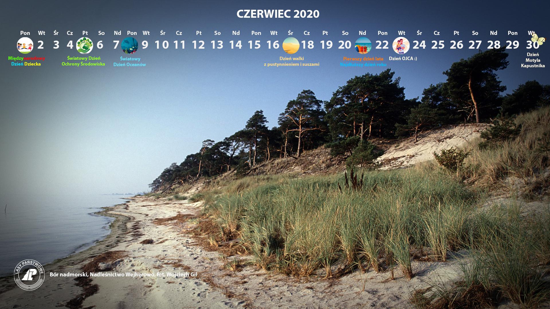 Kalendarz czerwiec 2020 1920x1080.jpg