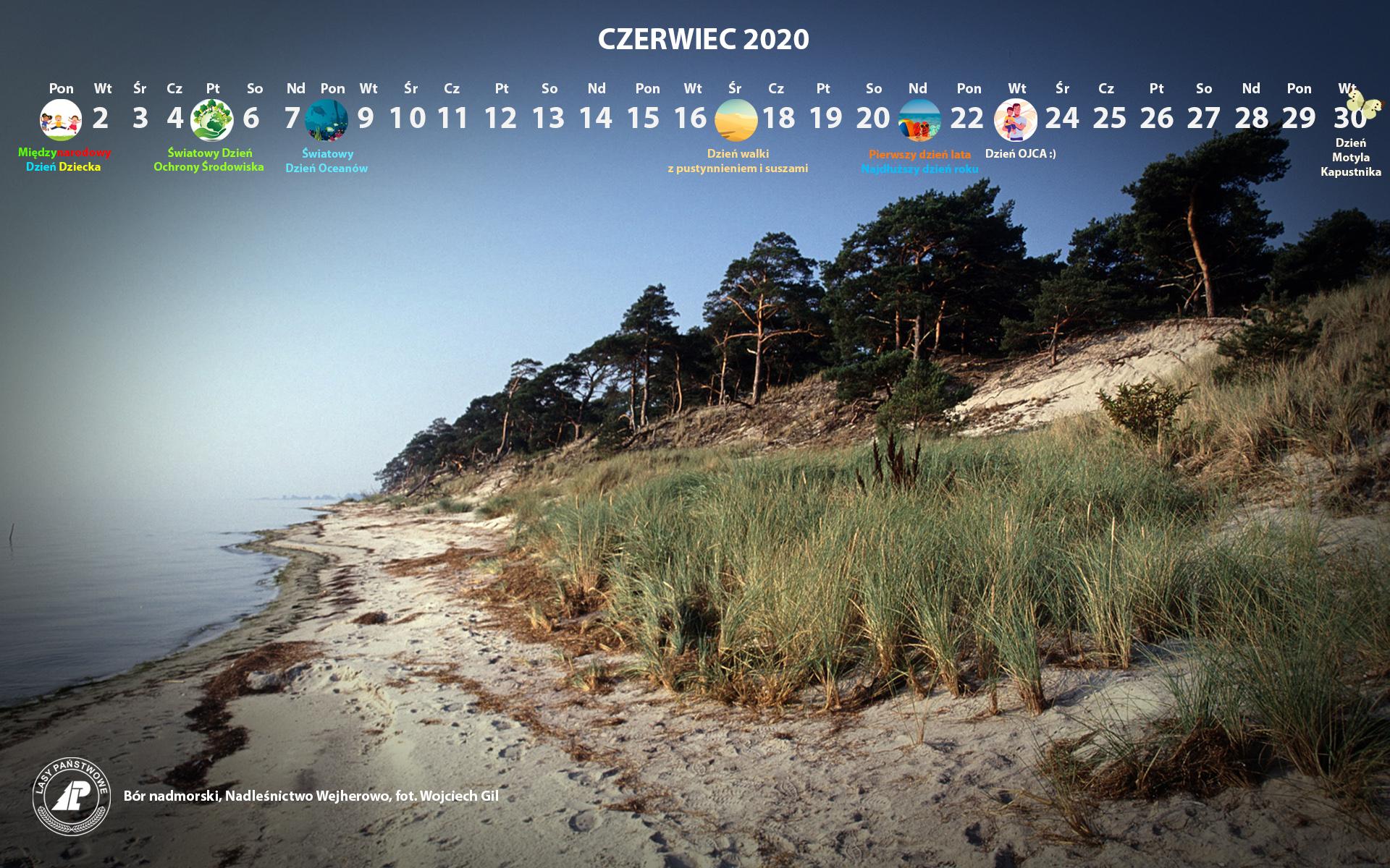 Kalendarz czerwiec 2020 1920x1200.jpg