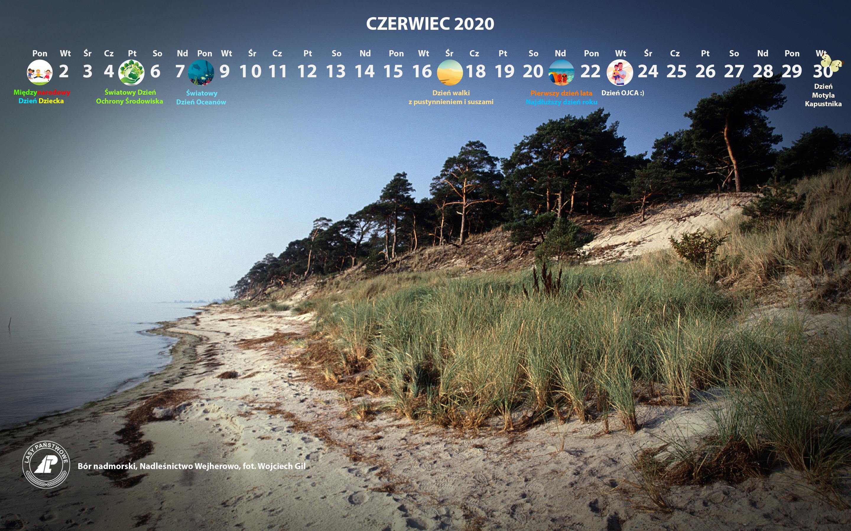 Kalendarz czerwiec 2020 2880x1800.jpg
