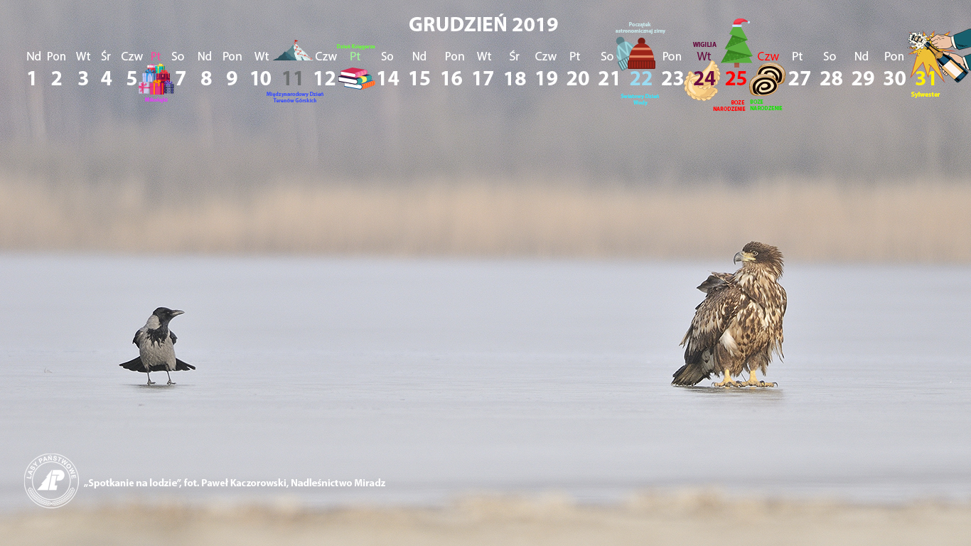 Kalendarz 12 2019 1366x768.jpg