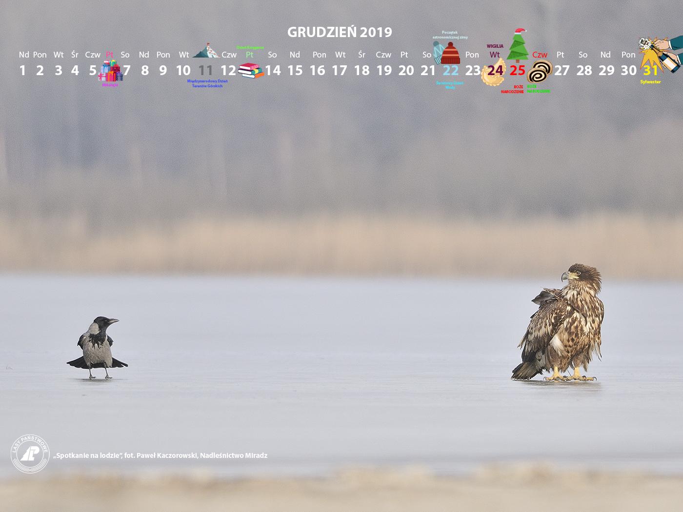 Kalendarz 12 2019 1400x1050.jpg