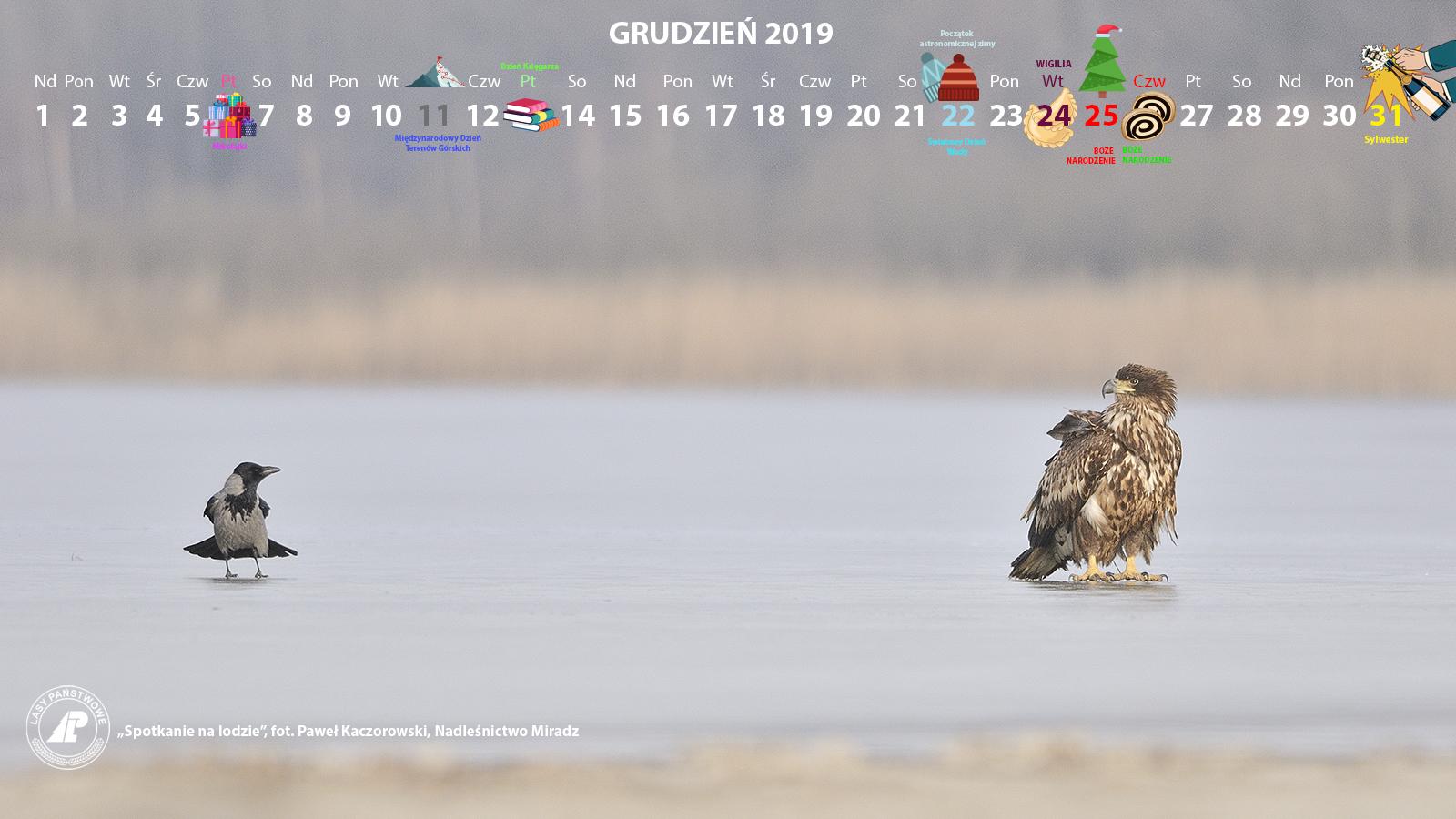 Kalendarz 12 2019 1600x900.jpg