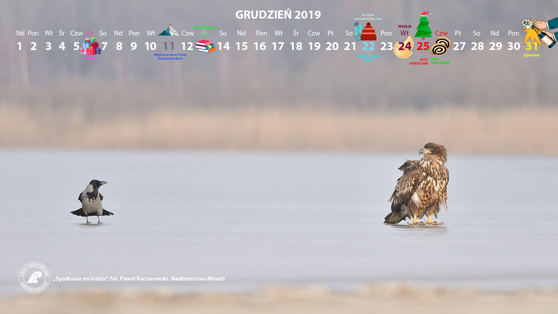 Kalendarz 12 2019 1920x1080.jpg
