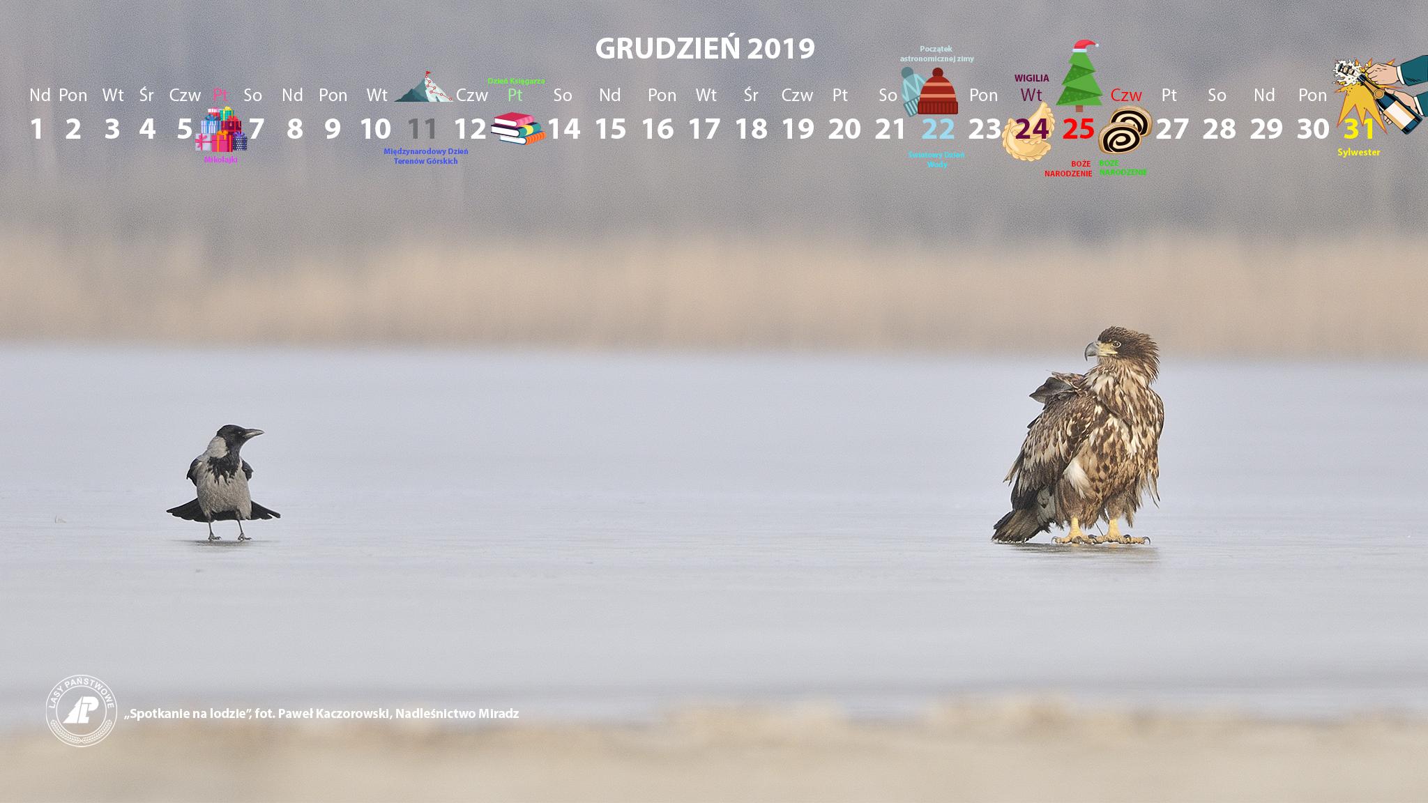 Kalendarz 12 2019 2048x1152.jpg