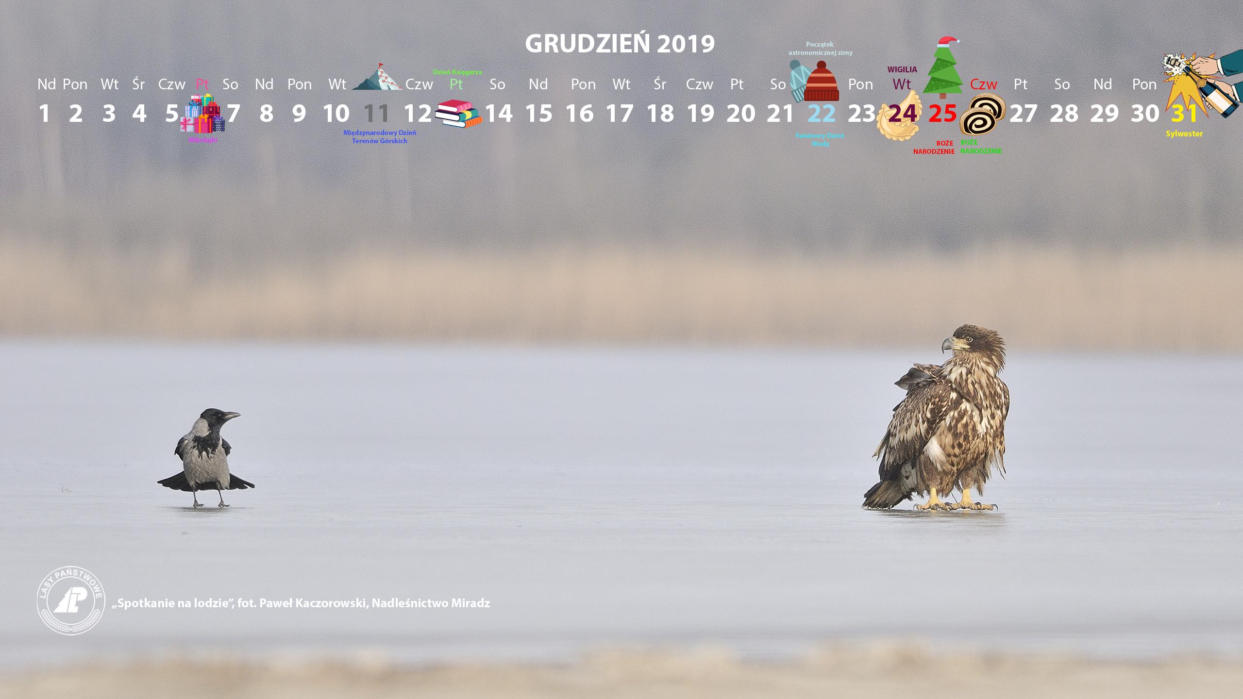 Kalendarz 12 2019 2460x1440.jpg