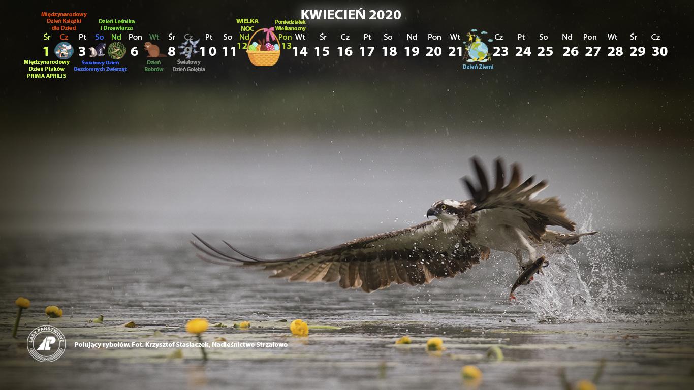 Kalendarz kwiecień 2019 1366x768.jpg