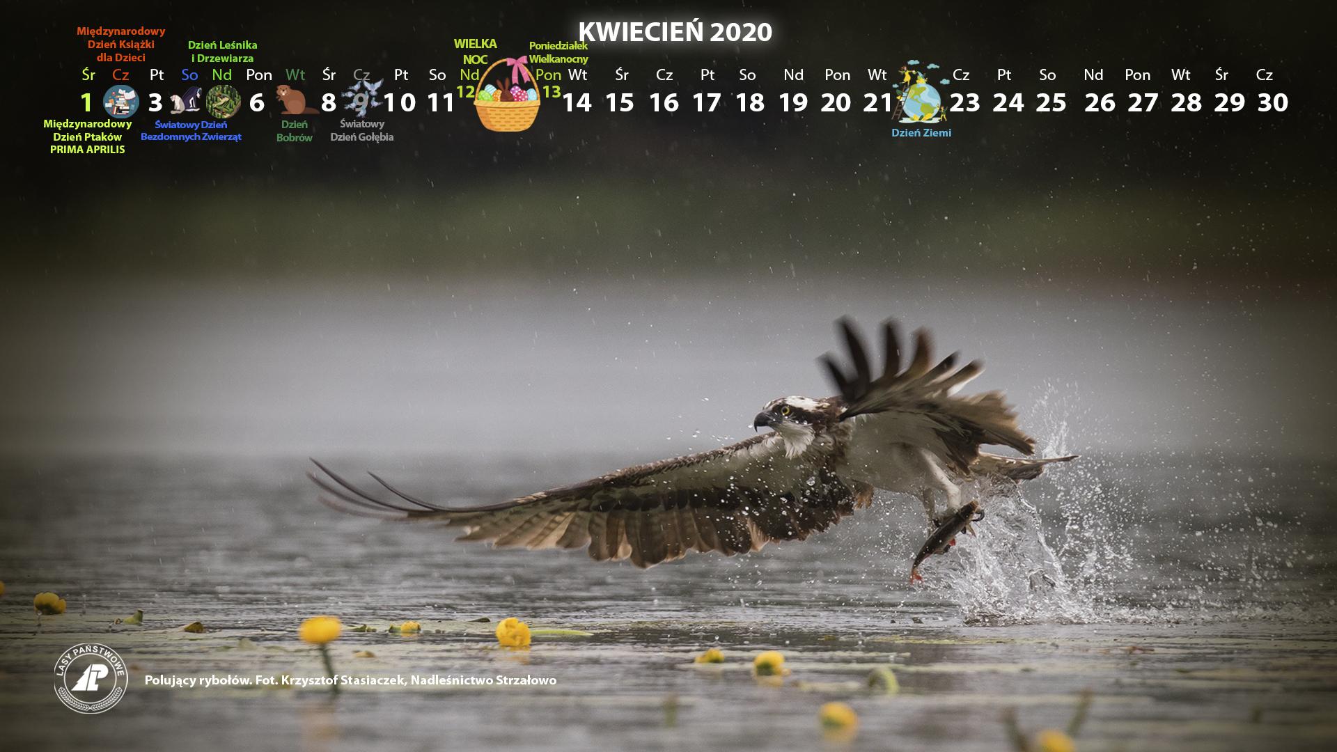 Kalendarz kwiecień 2019 1920x1080.jpg