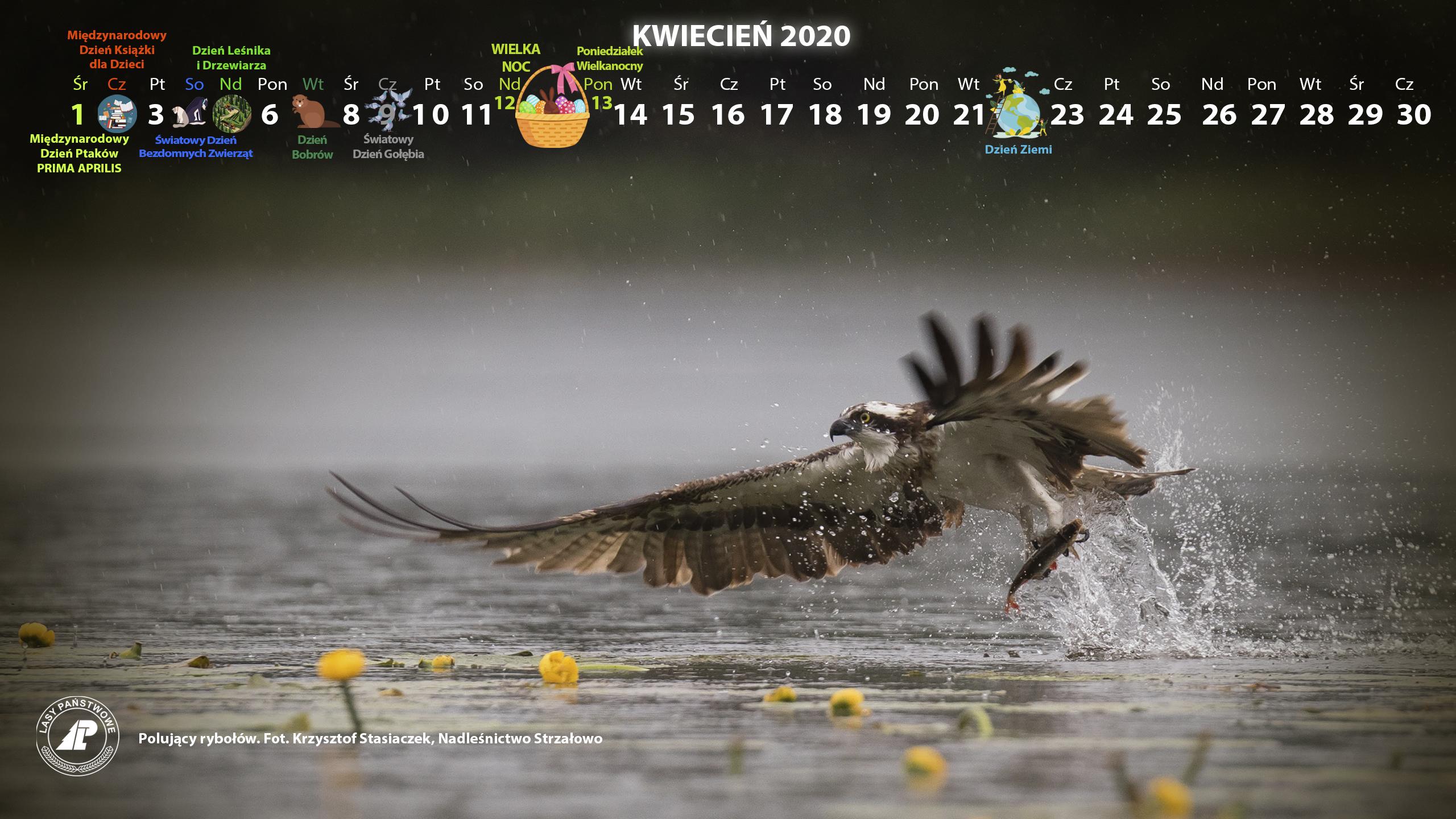 Kalendarz kwiecień 2019 2560x1440.jpg